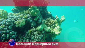 Орел и Решка. Большой Барьерный риф