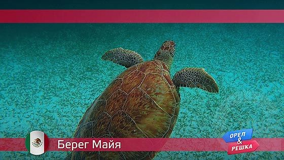 Орел и решка: Берег Майя. Мексика